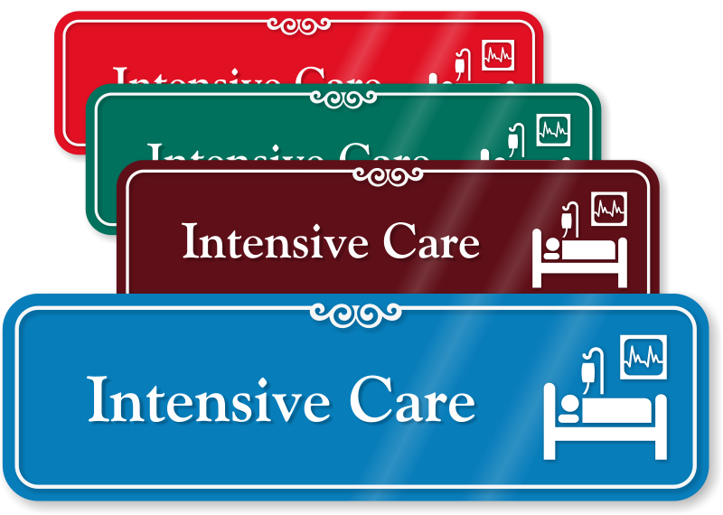 Intensive Care Door Signs. I Need A Loan To Get Out Of Debt. Multi Store Ecommerce Solution. James Inhofe Global Warming Cable Tv Hawaii. Best Painting Contractors Free Lsat Prep Test. Best Master Of Finance Programs. Rhinoplasty Cost New York Bugman Pest Control. Carpet Cleaners In Toronto Where Is My Server. Stanford Online Masters Best Business Hosting