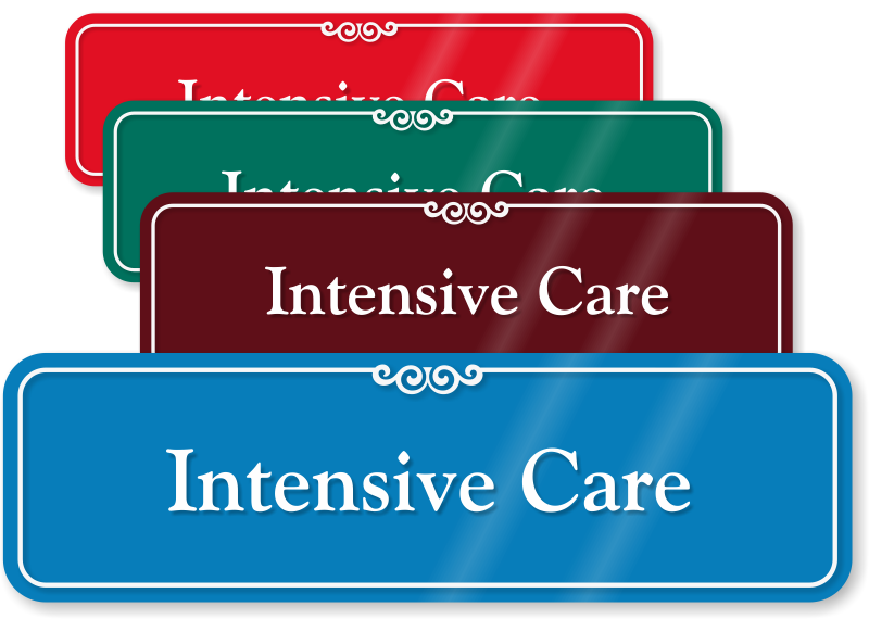 Intensive Care Door Signs. Second Home Mortgage Rates 24 Hours Insurance. At&t Internet Business Customer Service Number. Quality Insurance Company Body Shop Services. Best Credit Cards To Build Credit Score. Surface Roughness Chart El Camino Urgent Care. Buy Now Pay Later Apple Online Degree Reviews. Auto Send Email Outlook Seeding Bermuda Grass. Palm Springs Tram Weather Ford Dealers Albany