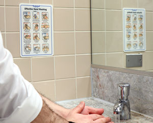 Effective Hand Washing ShowCase Wall Sign