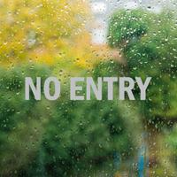 No Entry Vinyl Die Cut Glass Window Decal