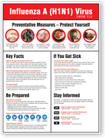 Swine Flu Preventive Measures Poster