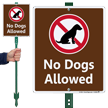 No Dogs Allowed Sign - No Pets
