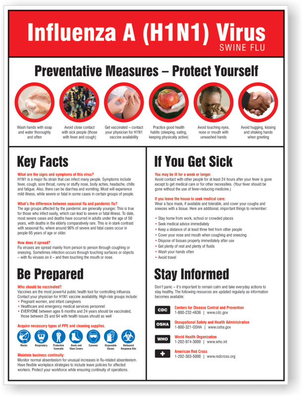 Preventive Measures For H1n1 Swine Flu Poster Durable